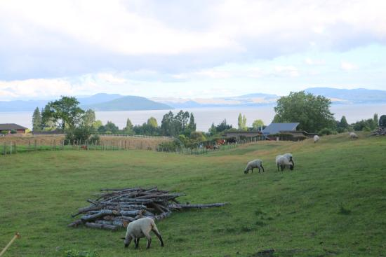 A Panoramic Country Homestay Photo