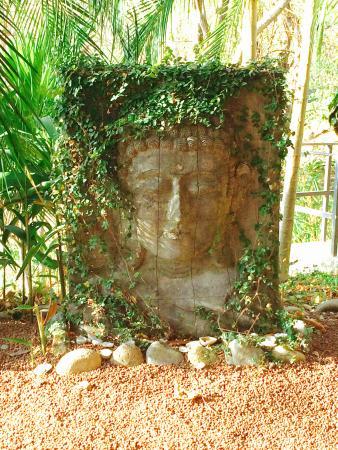 Foto de Costa Rica Yoga Spa