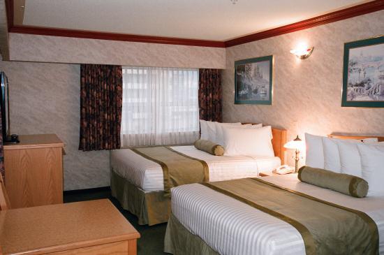 Robsonstrasse Hotel & Suites : Std Guest Room - 2 beds