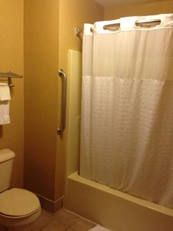 Comfort Suites Wisconsin Dells Area: Bathroom is simple but clean.