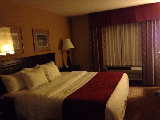 Comfort Suites Wisconsin Dells Area: King size bed; Super comfortable!!