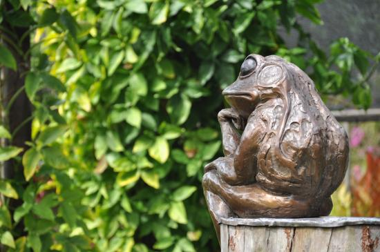 Kilauea, Hawaje: Frog at the Entrance