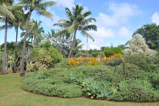 Na Aina Kai Botanical Gardens: Na Aina Kai Gardens