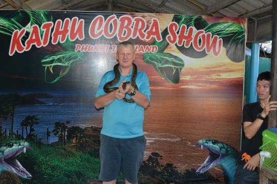 Snake Show Entry - Picture of Phuket Cobra Show and Snake Farm, Rawai - TripA...