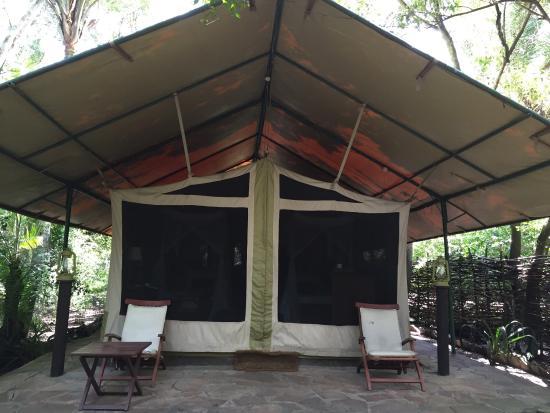 Mara Intrepids Luxury Tented C& The tent bathroom and beds & The tent bathroom and beds - Picture of Mara Intrepids Luxury ...