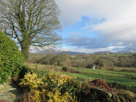 Rhos Country Cottages: View from the patio