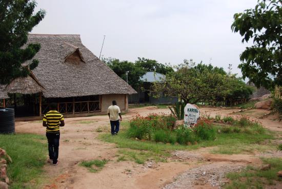 Felix Kisamo Private Tour Guide in Arusha, Tanzania – tourHQ