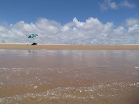 Pirambu beach: Praia próxima ao projeto Tamar