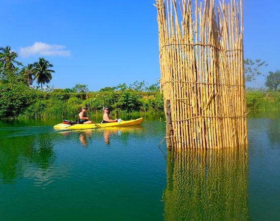 Kayak River Adventures Foto