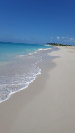 Beach - Ocean Club Resort Photo