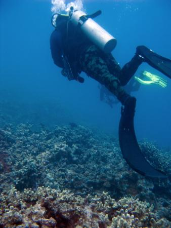 Molokai Fish & Dive Center: The divemaster