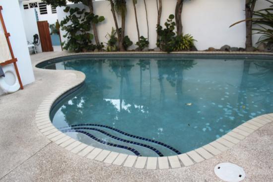 Pool - Tres Palmas Inn Photo