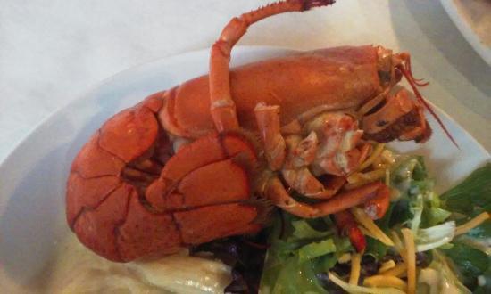 lighthouse lobster feast picture of lighthouse lobster feast rh tripadvisor com