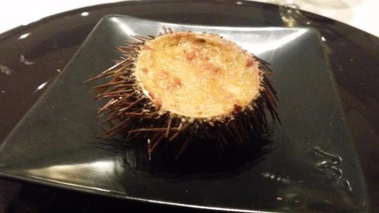 Image result for Erizo Relleno Sea Urchin