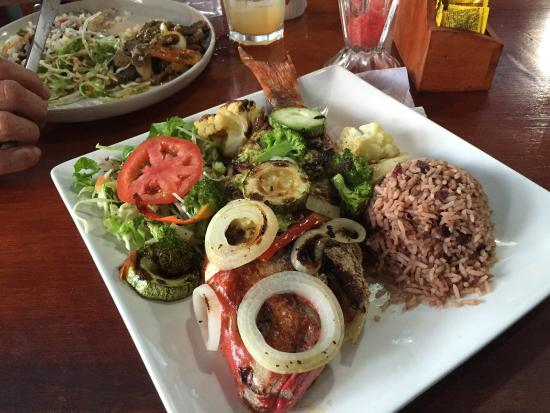 Image result for Restaurante Lidia's Place limon