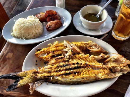 Untere terrasse picture of garcia seafood grille miami for Garcia s seafood grille fish market miami fl