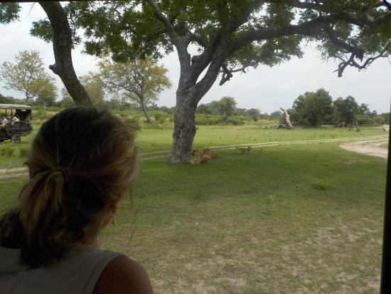 The Retreat Selous Photo