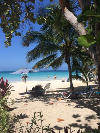 Zanzi Beach Resort Negril Jamaica Hotel Reviews Photos Tripadvisor