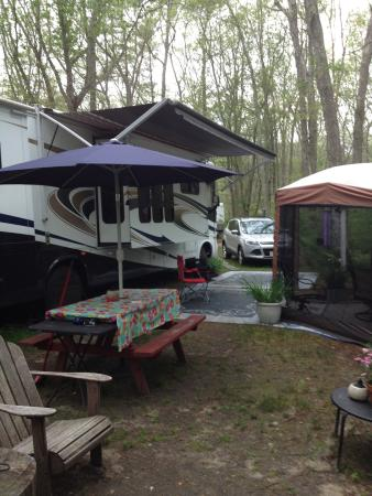 Westport Camping Grounds : Summer 20015 My site!!👍