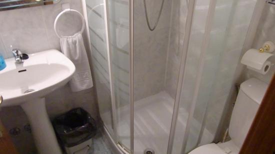 Hospedaje Los Rosales: トイレやシャワールーム