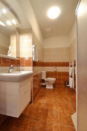 Hotel Palac: Koupelna