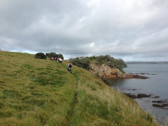 Pulau Waiheke, Selandia Baru: Walkers on Waiheke