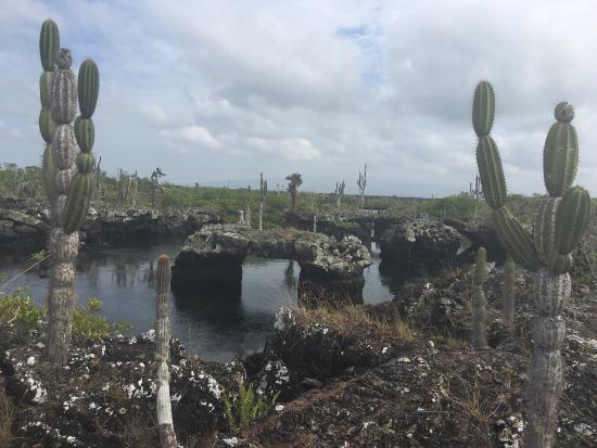 Puerto Villamil, Ecuador: photo0.jpg