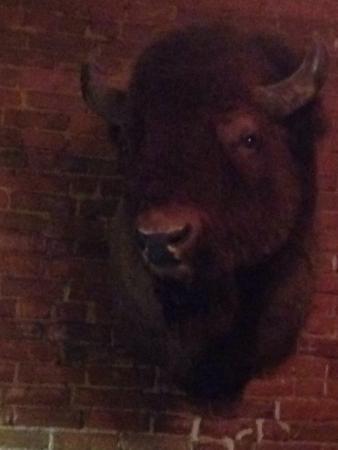 Indian Creek Steakhouse: photo0.jpg