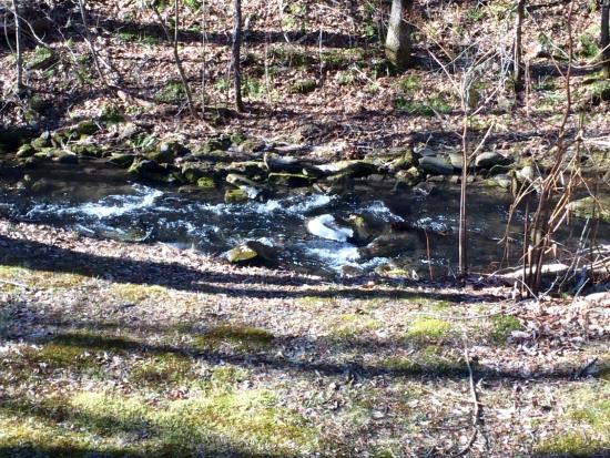 Pine Hill, Nova York: view of Creek from Back