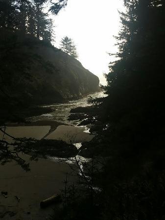 일와코 사진