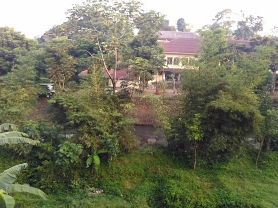 Puri Avia: Sungai yang mengalir dari belakang kamar