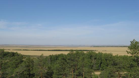 Stepnoye, Rusia: Вид со скал