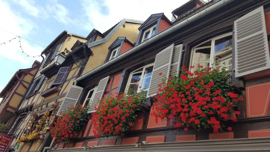 Old Town Tanti Fiori Ad Abbellire Ulteriormente La Cittadina