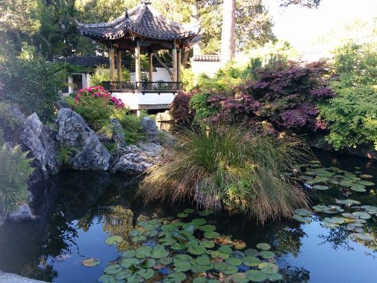 Nelson, New Zealand: Japanese Garden in the Queen's Gardens
