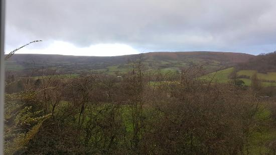 Cwmdu, UK: 20160221_085705_001_large.jpg