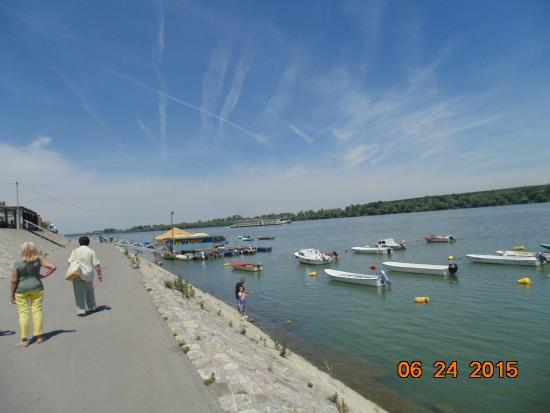 Zemunski Kej And The Danube River Na Slici Je Zemunski Kej
