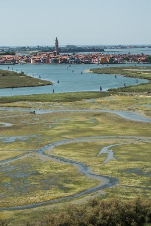Venice Boat Experience: Venice Lagoon