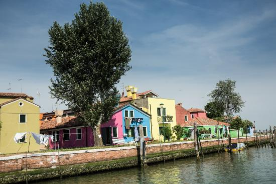 Venice Boat Experience: Typical houses