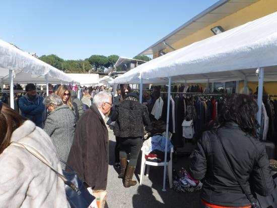 Borghetto Flaminio: Take cash!