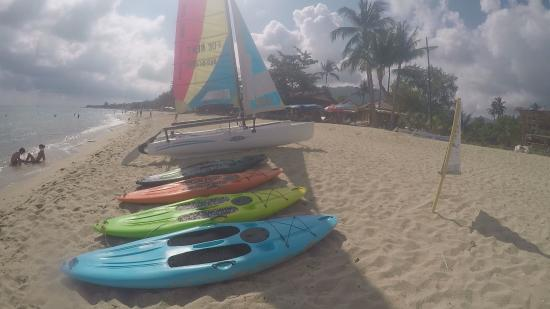Samui Hobie Cat and SUP