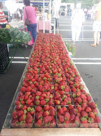 Strawberries Picture Of Mt Olympus Berry Farm Ruther Glen Tripadvisor