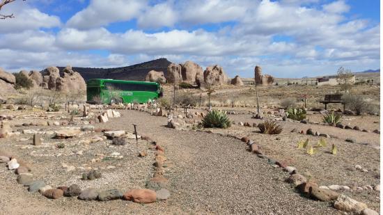 Green Tortoise Adventure Travel Photo
