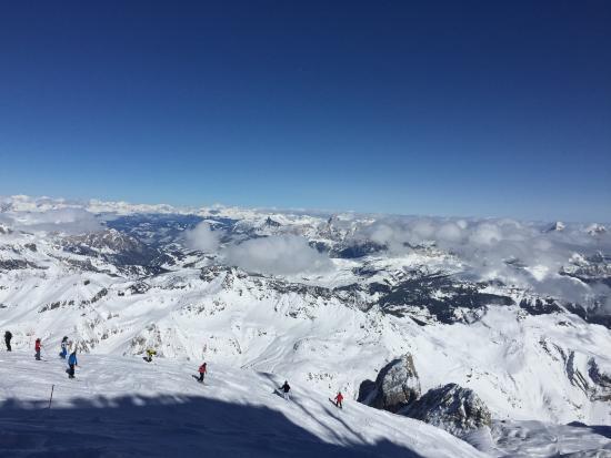 Marmalade Glacier view