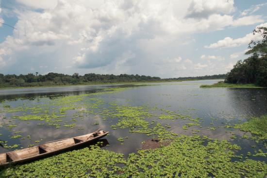 Tapiche Reserve: The view