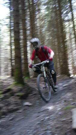 Me on the move - Picture of Bike Park Wales, Merthyr Tydfil