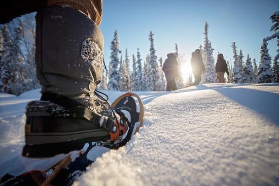 Blachford Lake Lodge: Snowshoeing
