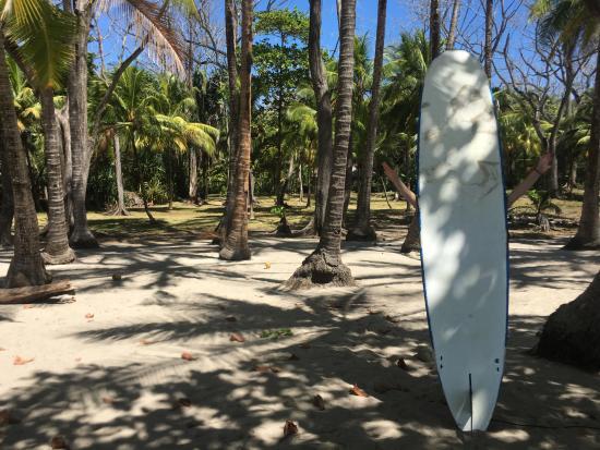 Pachamama Tropical Garden Lodge Foto