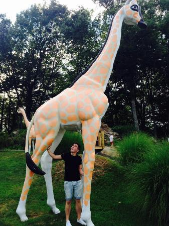 Safari Golf: Fun with the Giraffe