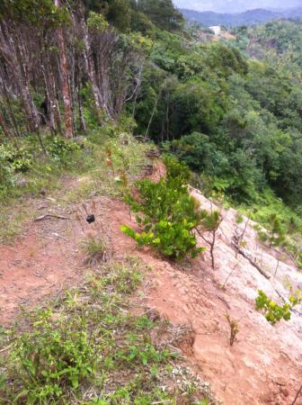 Barre de L'Isle Trail: Mudslide destroyed path