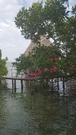 Isla Popa, Panamá: 20160129_164125_large.jpg